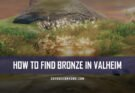 How to Find Bronze in Valheim