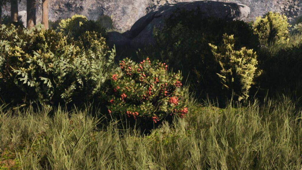 Icarus berry bush